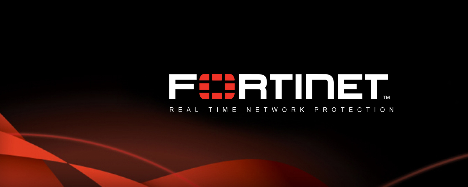 hero banner for Fortinet